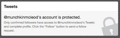 Twitter: Protected Account