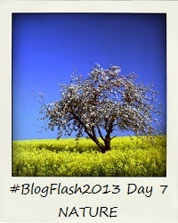 #BlogFlash2013 (March): Day 7 - Nature