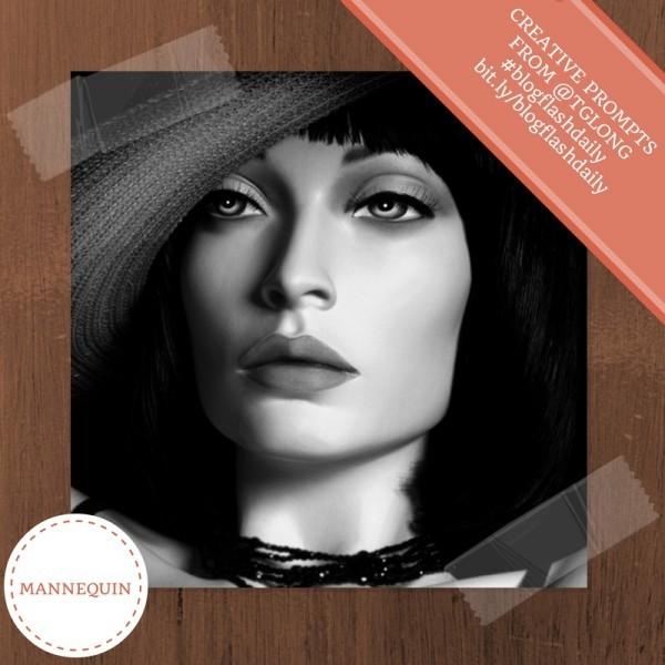 BlogFlashDaily: Mannequin
