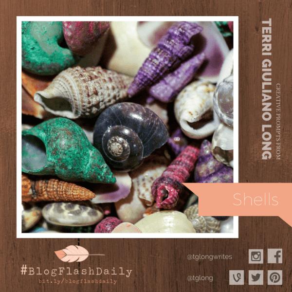 #BlogFlashDaily: Shells