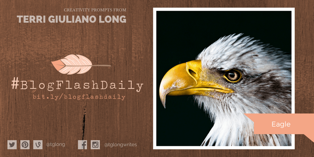 #BlogFlashDaily Creativity Prompt: Eagle