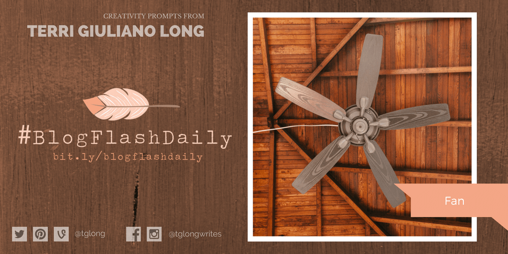 #BlogFlashDaily Creativity Prompt: Fan