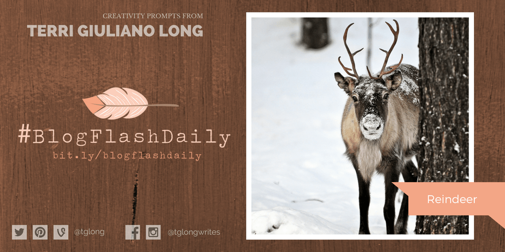 #BlogFlashDaily Creativity Prompt: Reindeer
