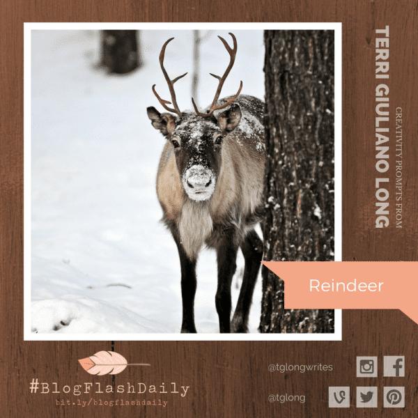 BlogFlashDaily Creativity Prompt: Reindeer