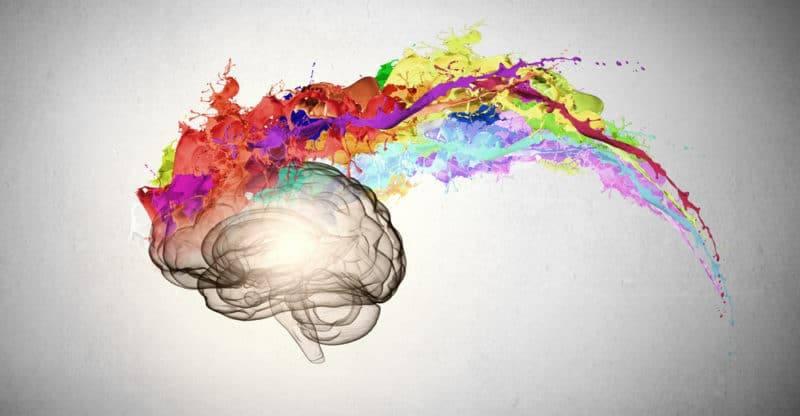 Creative brain